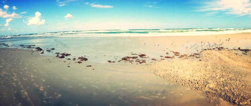Flagler Beach in Panorama